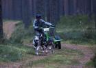 Pasaules kausa posms un Latvijas čempionāts kamanu suņu sportā