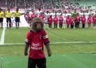 Video: Pērtiķis uzstājas pirms futbola