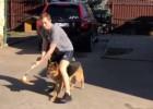 """Video: Rīgas """"Dinamo"""" vārtsargs ar suni pievēršas florbolam"""