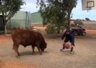 Video: Laucinieks attīsta basketbola prasmes cīņā pret bulli