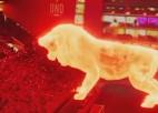 Video: Milzu lauvas hologramma parādās stadionā