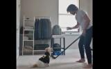 """Video: Panarins gatavojas cīņai pret """"Bruins"""", Hāru imitē """"Rižijs"""""""