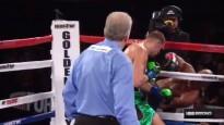 51 gadu veco Hopkinsu atvadu cīņā izlidina no ringa