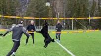 Pludmales volejbolists uztrenē suni un spēlē kā ar pārinieci
