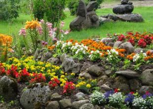Video: Kas īpašs Dvīņu dārzā. Astroloģiskie dārzi