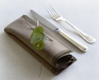 Senči galda salvetēm