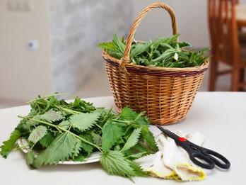 Ēdam nezāles! 3 receptes veselīgajai maltītei