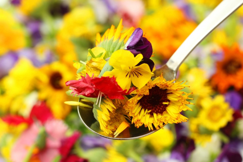 Ziedi kulinārijā. Kur un kā tos izmantot?