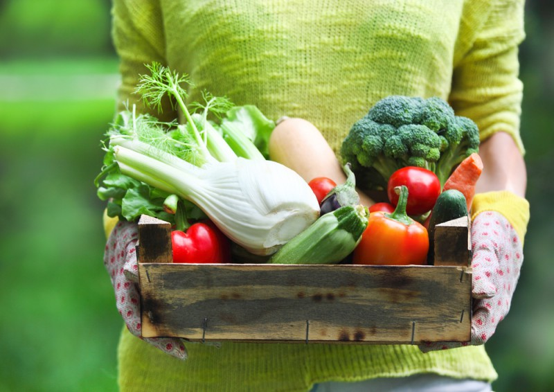 Veselīga sezonāla dabas virtuve
