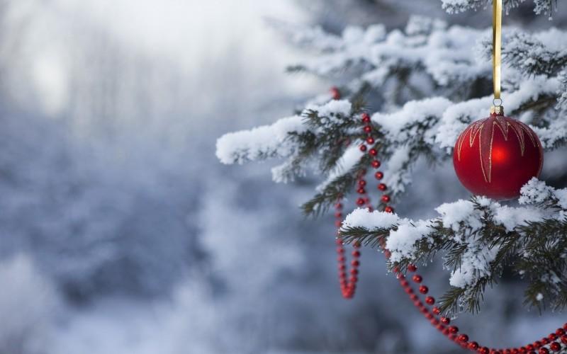 Decembris noslēgsies ar rekordsiltiem laika apstākļiem