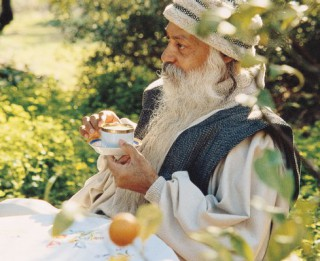 Ošo par veģetārismu kā meditācijas blakusproduktu