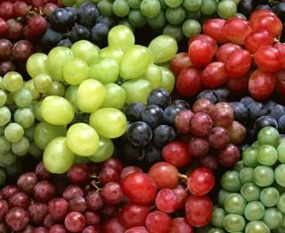 Vīnogu šķirnes, to kopšana, stādīšana, apgriešana