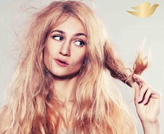 10 padomi, kā sausus matus padarīt veselīgus un spīdīgus