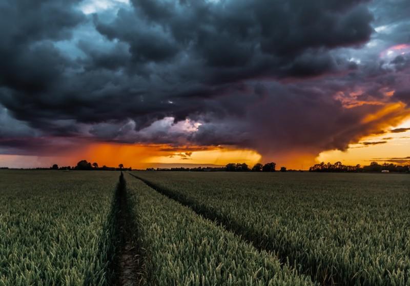 Fotogrāfa padomi: Kā uzņemt perfektu dabas skatu